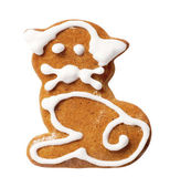 Gingerbread cookie — Stock fotografie