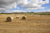 Straw bales and dramatic skies — Stock Photo