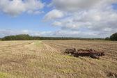 Disc harrows in a stubble field — Stock Photo