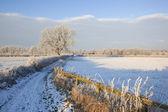 Zimą gospodarstwo utwór — Zdjęcie stockowe