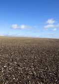 Chalky plowed field — Stock Photo
