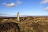 Moorland monolith — Stock Photo