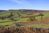 North york moors autumn — Stock Photo