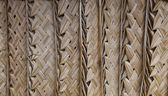 Palm thatch background — Stock Photo