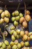 Fundo de coco — Fotografia Stock