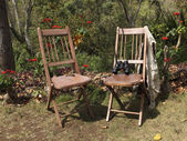 Two rustic wooden chairs — Photo