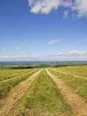 Yorkshire wolds hay field — Stock Photo