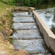 Fish ladder — Stock Photo #12833240
