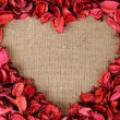 Heart shaped frame made from red petals — Stockfoto