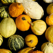 Assorted Gourds — Stock Photo #12252478