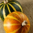 Two Gourds Still Life — Stock Photo #12252481