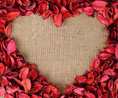 Heart shaped frame made from red petals — Stock Photo