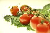 Tomato vegetable — Stock Photo