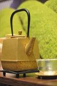 Iron asian teapot — Stock Photo