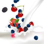 Berries Splash — Stock Vector