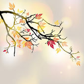 Autumnal branch — Stock Vector