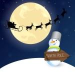 Winter scene - christmas card — Stock Vector #14573149