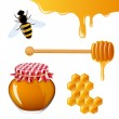 Honey Elements — Stock Vector #15763447