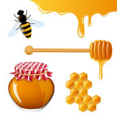 Honey Elements — Stock Vector