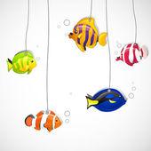 Ryby ozdobne — Wektor stockowy