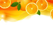 Orange Fruits — Stock Vector