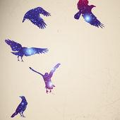 красочные птицы — Cтоковый вектор