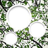 Естественный фон с филиалами — Cтоковый вектор