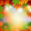 Autumnal leaves — Stock Vector