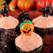 Halloween Cupcakes in Evening Fall Setting — Stock Photo