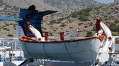 łodzi ratunkowych na statku pasażerskiego dużych — Zdjęcie stockowe