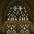 Stained glass window. Gothic cathedral of Saint Gatien — Stock Photo #16815887
