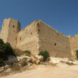 Medieval Castle of Kritinia in Rhodes Greece, Dodecanese — Stock Photo #21891191