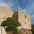 Medieval Castle of Kritinia in Rhodes Greece, Dodecanese — Stock Photo #21892045