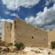 Medieval Castle of Kritinia in Rhodes Greece, Dodecanese — Stock Photo #21892085