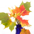 Bouquet of autumn leaves in bright colored vase — Stock Photo