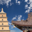 Giant Wild Goose Pagoda or Big Wild Goose Pagoda, is a Buddhist pagoda located in southern Xian (Sian, Xi'an),Shaanxi province, China — ストック写真