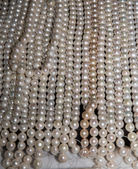 Pearls (can be used as a background) — Stock Photo