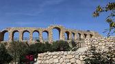 римские руины в иорданский город джераш (гераса античности), столица и крупнейший город провинции джераше, иордания — Стоковое фото
