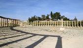 Forum (oval plaza) i jerash, Jordanien. Forum är en asymmetrisk plaza i början av den colonnaded street, som byggdes under det första århundradet — Stockfoto