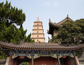 Giant Wild Goose Pagoda or Big Wild Goose Pagoda, is a Buddhist pagoda located in southern Xian (Sian, Xi'an),Shaanxi province, China — Foto Stock