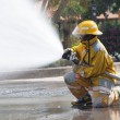 Firefighter Working - Stock Photo