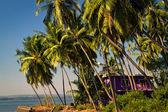Bella casa incorniciata da palme sulla riva del mare — Foto Stock