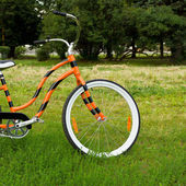 An orange bicycle standing on green meadow — Stock Photo