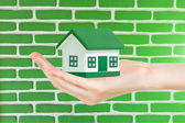 Green house in hand against brick wall background — Stock Photo