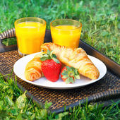 Breakfast outdoors — Foto de Stock