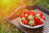Bol de fraises — Photo