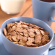 Chocolate Corn Flakes Cereal - Stock Photo