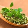 Oregano - Stock Photo