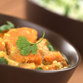 Sweet Potato Curry with Cilantro — Stock Photo