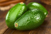 Avocado Fuerte — Stock Photo